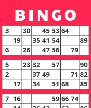 1-90 bingo card example
