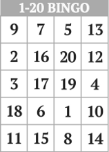 1-20 Number Bingo Cards <br/>Printable and Mobile